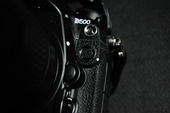 DSC_4447.jpg
